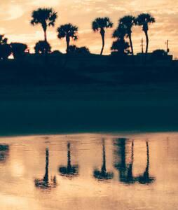 Steps to the Beach, River&Daytona - Ormond Beach - Apartment
