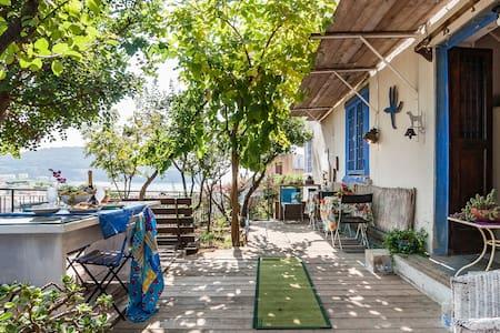 Gaeta Casa Agricola Mediterranea, warm weather !! - Apartment