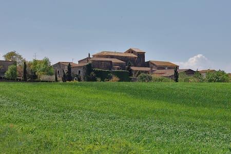 Casa de piedra en pueblo encantador - Vilaur - Casa