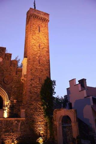 Zamek na wyłączność - Castle
