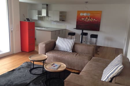 moderne 3,5 Zi Wohnung - Dornach - Apartment