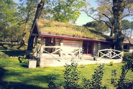 Cabane champêtre - Huis