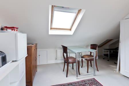 Beautiful,large,stylish double room - London - House