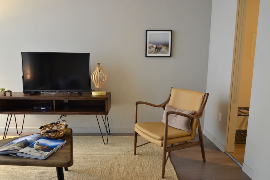 Mid-Century modern furnishings. Cable TV & high-speed 100 mbps. internet