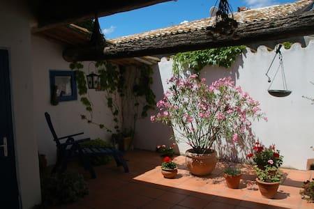 Charmantes Haus mit großer Dachterrasse - Lespignan