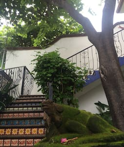 Casa Conti Bacocho Appartments - 普陀埃斯坎迪都 - 公寓