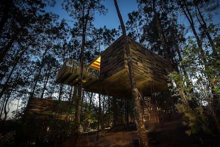 Cabaña en el árbol (Cabaña Barquiña) - Outes - Cabana