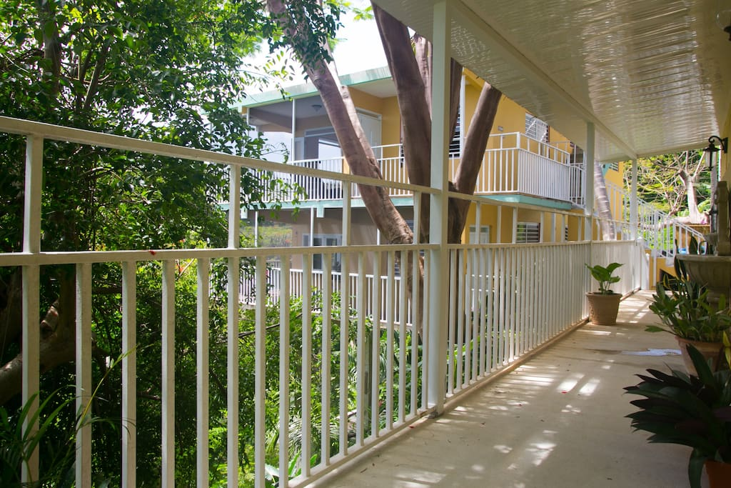 The walkway to the apartment.