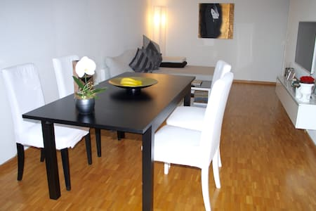 Excellent Apartement in Luzern - Appartement