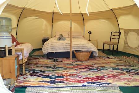 Tipi Phoenix - (Tipsy Belle) - Medford - Tent