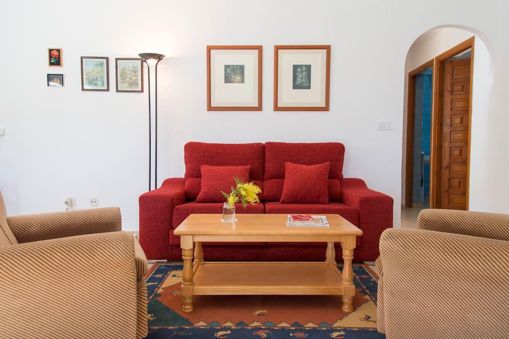 Ambiente agradable, sofá confortable
