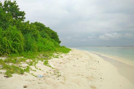 Feel local, amazing place Maldives - Bileiydhoo - House