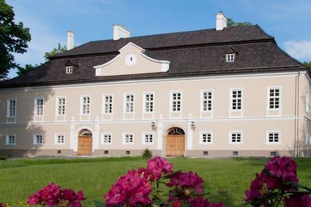 Zámek Jeseník nad Odrou - Castle