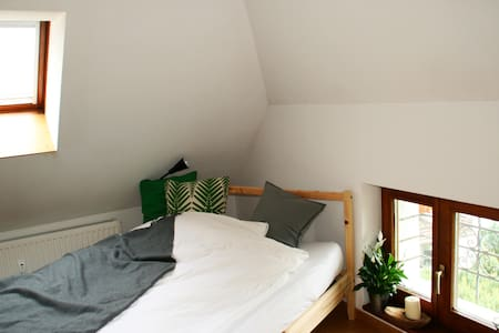 Helles Altbau-Dachgeschoss im Grünen - Passau - Apartamento
