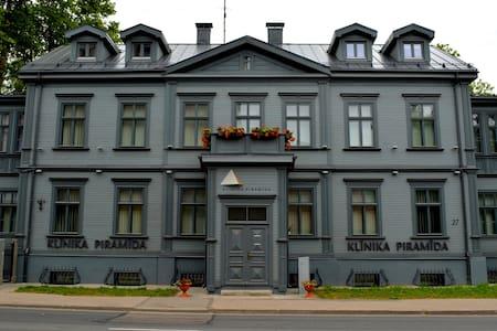 Kalnciema quarter apartment 1 - Riga - Leilighet