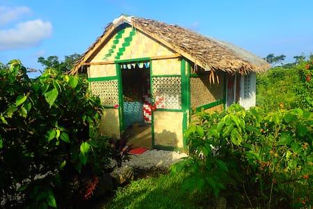 Bungalow: Best location in Tanna - Hut