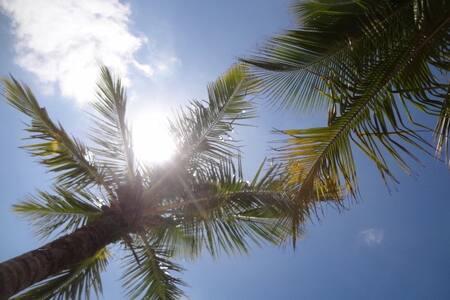 Casa em Guaratuba - 5 minutos da praia - Ev