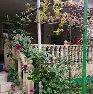 Alik's Central house - in the heart of Gabala - Gebele - House