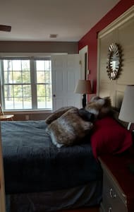 Roomy Fun Guest Suite on Blue/Brew Ridge Trail - Afton - Altres
