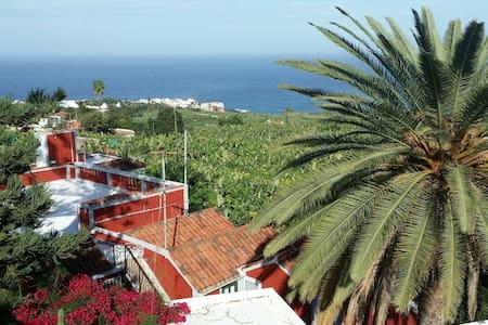 Rundumsorglospaket für die Frau - Puerto de la Cruz