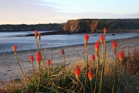 Cliff top beach cottage-double bed - Dublin