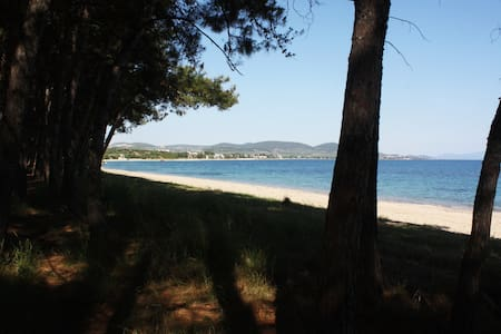 Perfect beach in the heart of Toroneos gulf - Chalkidiki - Apartment