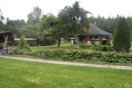 Эстонский уголок в Печорском районе - Pechory - Haus