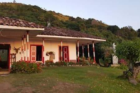 Villa Amparo  - Dom