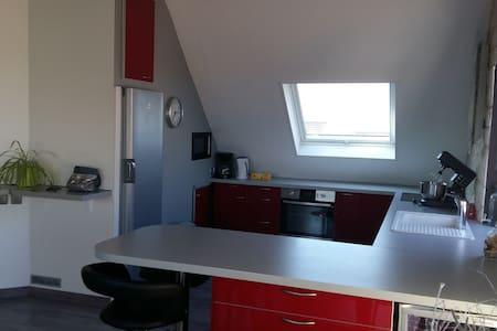 Beau Duplex Ittenheim à 10 minutes de STRASBOURG - Ittenheim - Apartment