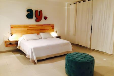 Beautiful apt in the trendy Mexico - México  - Loft