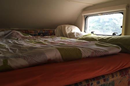 Das Wohnmobil am Bodenseeradweg - Camper