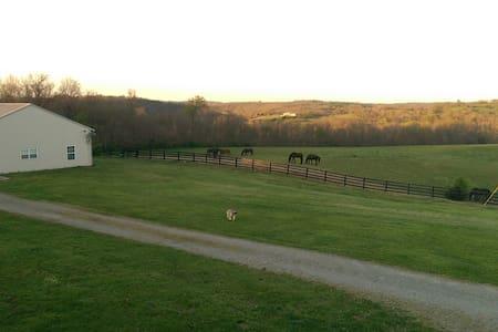 Friesian Horse Farm Bordering The Kentucky River - Harrodsburg