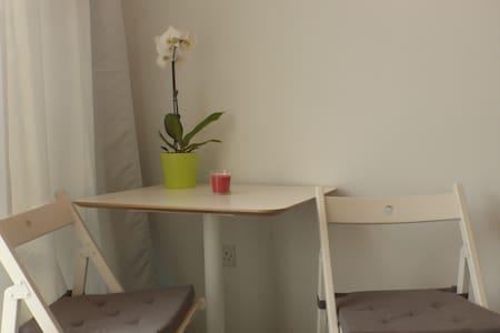 Central Bristol Studio Apartment - Apartment