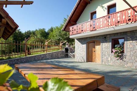 Vineyard cottage Luštek - Rumah