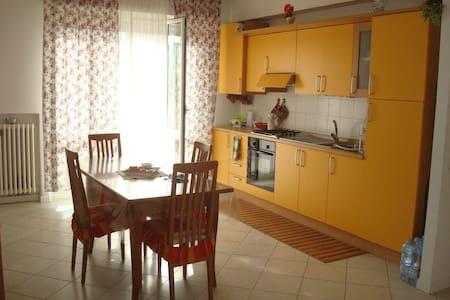 Bellissimo e luminoso appartamento - Appartement