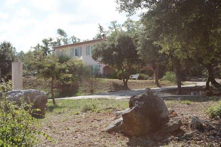 Chambre et douche privative dans villa non occupée - Camps-la-Source - Villa