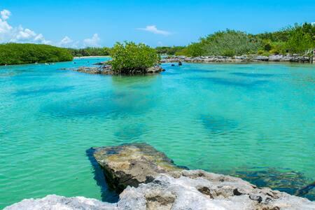 Casa Cenote Yal-Ku | Natural/Ecological Experience - Tulum