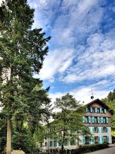 Steinabad - Appartement Belchen - Apartment