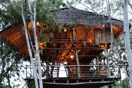 Loft: Tree House Suite - Cabana en un arbre