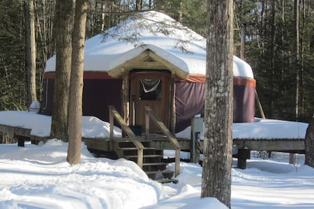 magical yurt in the woods - Williamsburg