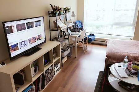 1 bedroom in the Roosevelt Island, New York - Nova York