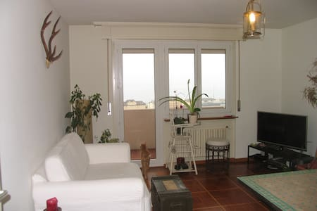 Magnifique chambre à Neuchâtel - Neuchâtel - Appartement