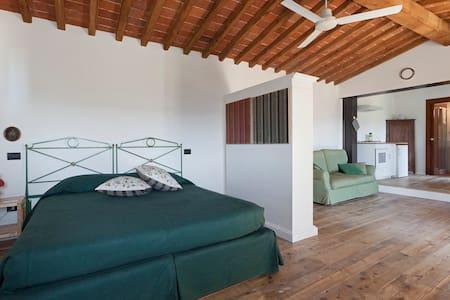 Agriturismo Solaia _ Studio Apartment_ - Wohnung