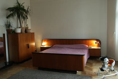 Comfortable, well-equipped, family-friendly flat - Prague