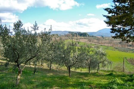 Villa in the heart of Umbria with view of Assisi - Apartment