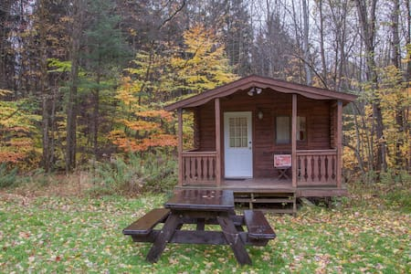 Log Cabin w/access to 20 mi. skiing& hiking trails - Freeville - Kisház