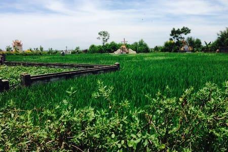 Nam Dinh Pro - nice countryside - Nam Dinh
