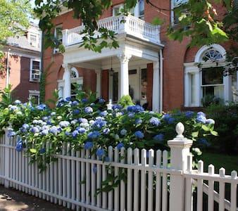 "Amadeus Guest House ""Library Loft"" - New Haven"