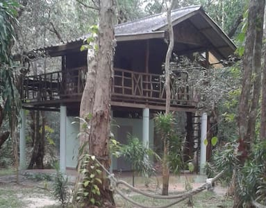 tree house big terrace - Boomhut