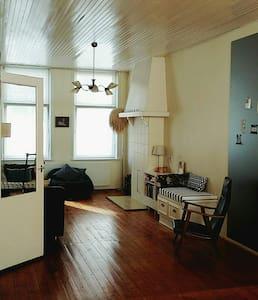 Ruime kamer in minimalistisch stadsappartement - Apartment